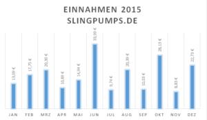 Einnahmen slingpumps.de 2015