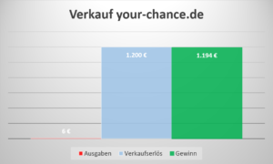 Einkommen Domainverkauf your-chance.de