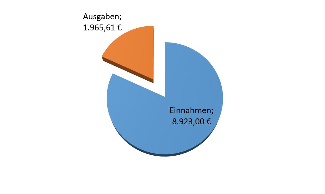 Einnahmen und Ausgaben Domainhandel